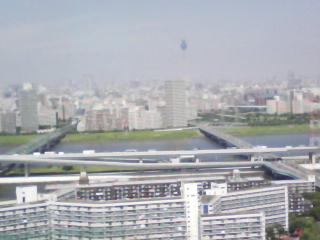 東京SF2010 に来てるぞ