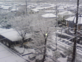 カーテンを開けるとソコは雪国だった