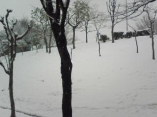 大雪で知る郊外ニュータウンの過疎少子高齢化